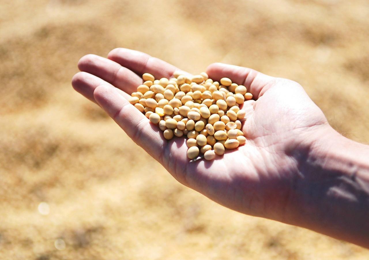 GLP para o agronegócio